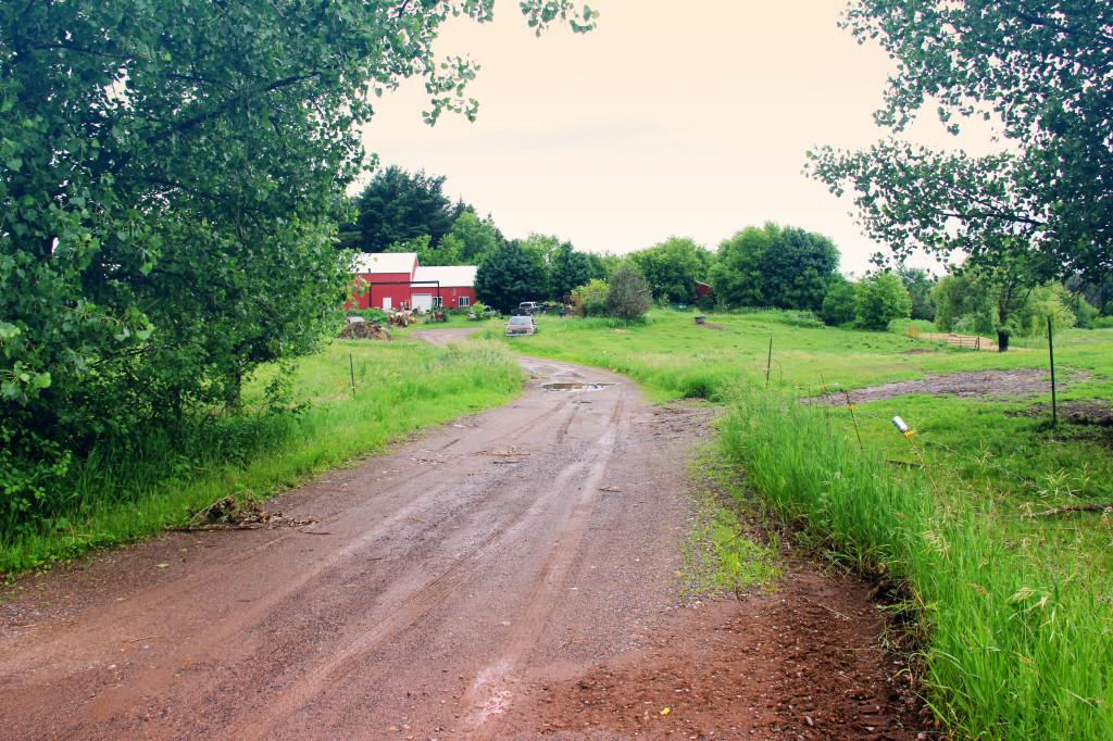 farm-studio